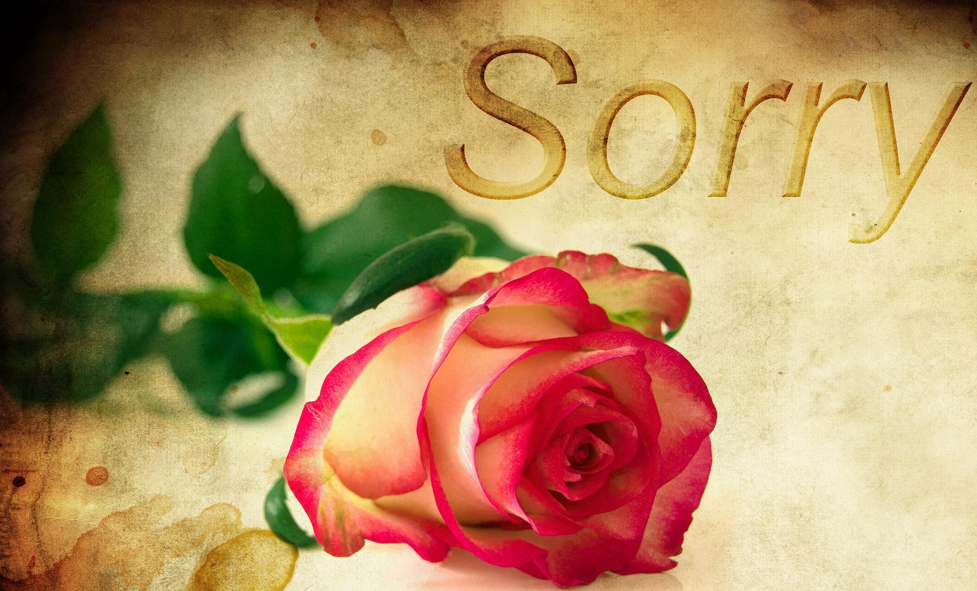 Bitte Verzeih Mir Gedichte Entschuldigungssprüche